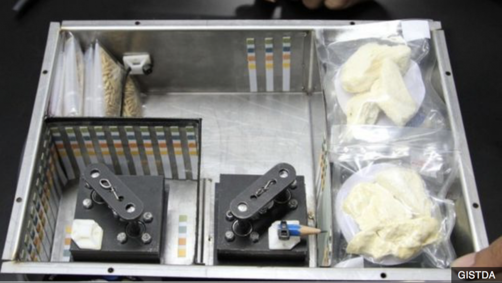 Thai sends durian to space